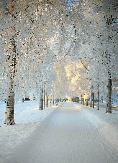 snow-lane